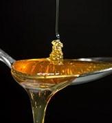 Miele dell'Oltrepò Pavese | Bottega Oltrepò