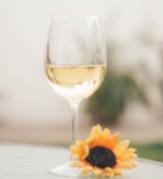 Vini bianchi dell'Oltrepò Pavese - Vendita online